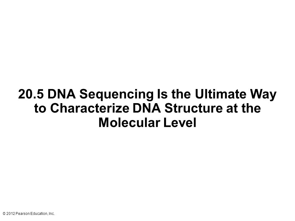 © 2012 Pearson Education, Inc. 20.5 DNA Sequencing Is the Ultimate Way to Characterize DNA Structure at the Molecular Level