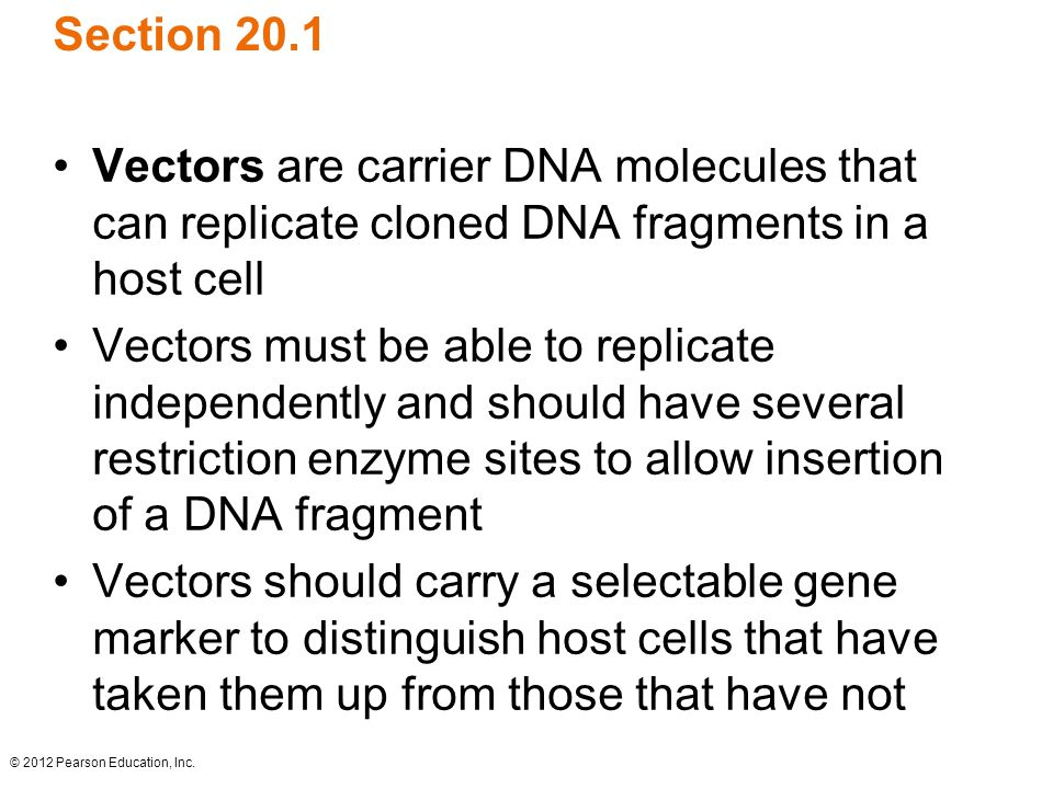 © 2012 Pearson Education, Inc. Section 20.1 Vectors are carrier DNA molecules that can replicate cloned DNA fragments in a host cell Vectors must be a