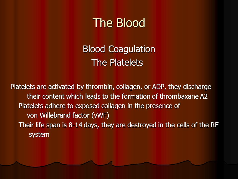 The Blood Blood Coagulation Blood Coagulation The Platelets The Platelets Platelets are activated by thrombin, collagen, or ADP, they discharge their content which leads to the formation of thrombaxane A2 their content which leads to the formation of thrombaxane A2 Platelets adhere to exposed collagen in the presence of Platelets adhere to exposed collagen in the presence of von Willebrand factor (vWF) von Willebrand factor (vWF) Their life span is 8-14 days, they are destroyed in the cells of the RE Their life span is 8-14 days, they are destroyed in the cells of the RE system system
