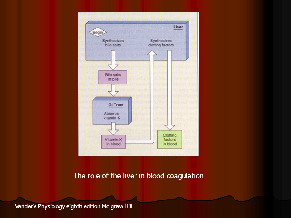 The role of the liver in blood coagulation Vander's Physiology eighth edition Mc graw Hill