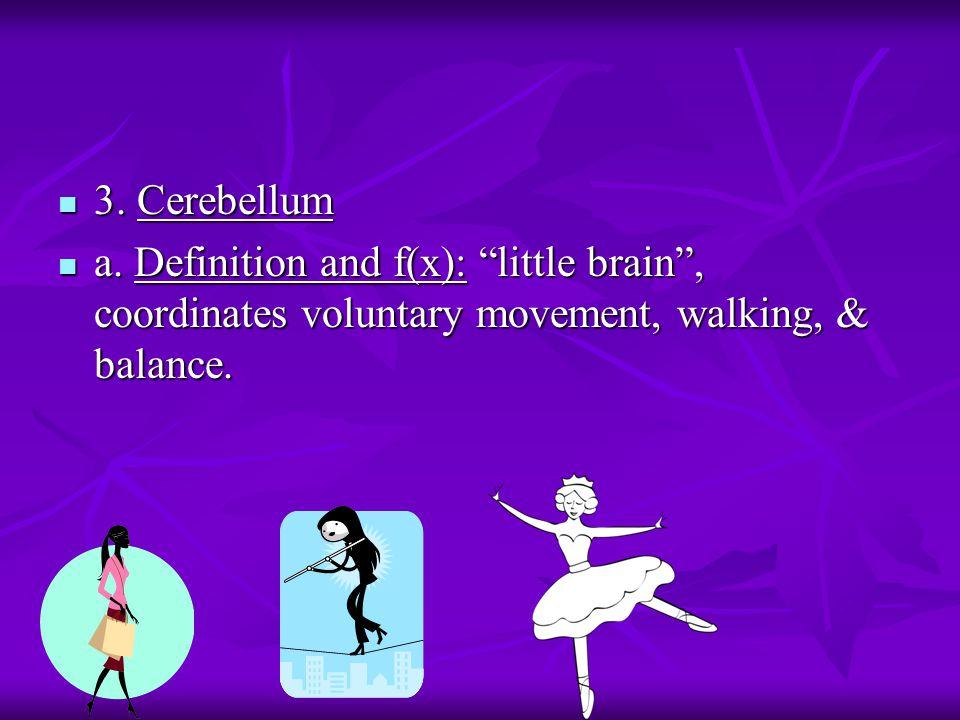 "3. Cerebellum 3. Cerebellum a. Definition and f(x): ""little brain"", coordinates voluntary movement, walking, & balance. a. Definition and f(x): ""littl"