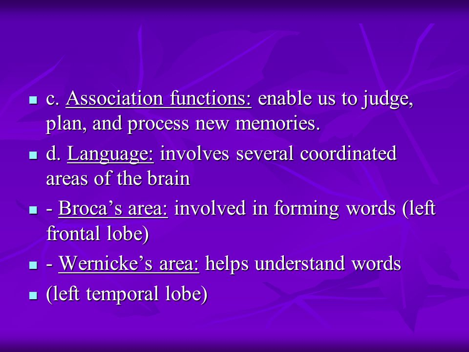 c. Association functions: enable us to judge, plan, and process new memories.