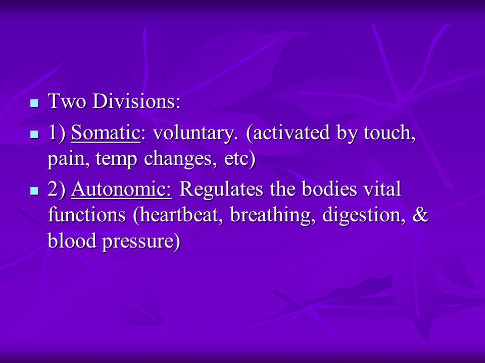 Two Divisions: Two Divisions: 1) Somatic: voluntary.