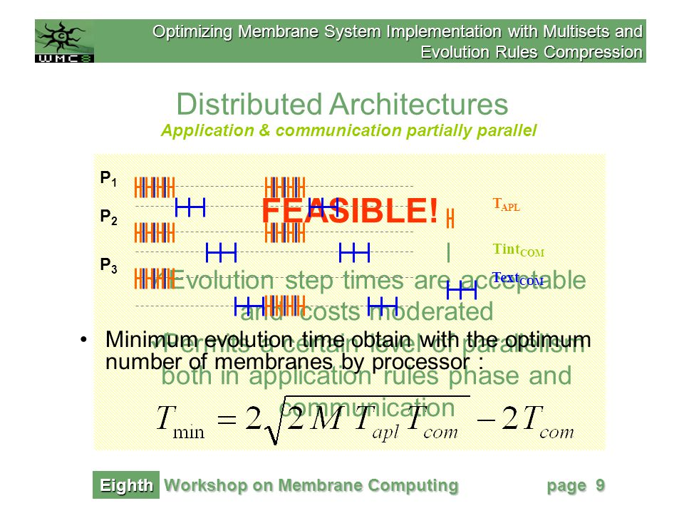 Optimizing Membrane System Implementation with Multisets and Evolution Rules Compression Workshop on Membrane Computing Eighth page 10 Distributed Architectures To reach minimum times over distributed architectures, there should be a balance between the time dedicated to evolution rules application and the time used for communication among membranes.