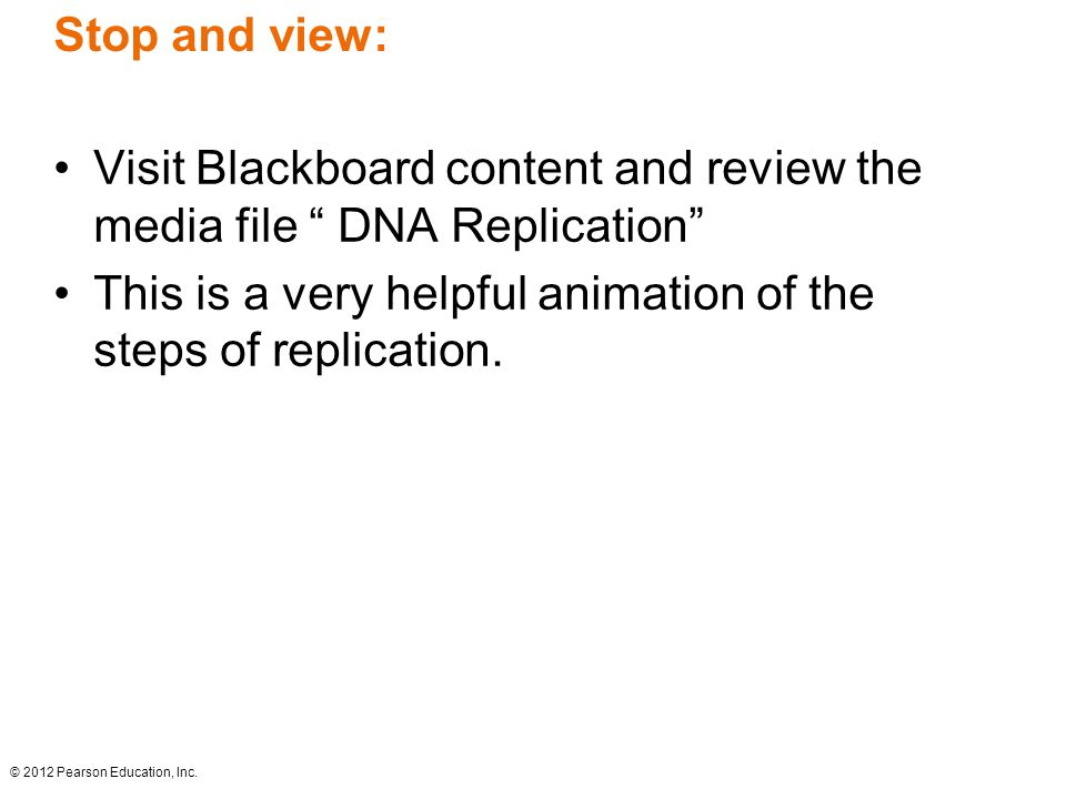 """Stop and view: Visit Blackboard content and review the media file """" DNA Replication"""" This is a very helpful animation of the steps of replication. © 2"""