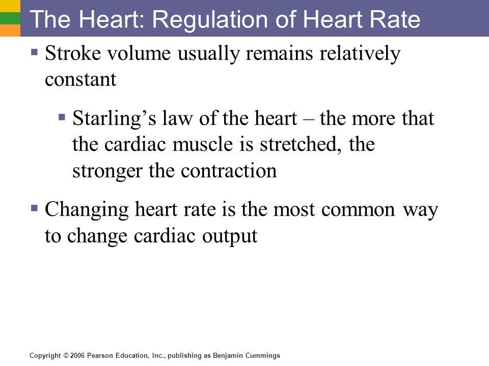 Copyright © 2006 Pearson Education, Inc., publishing as Benjamin Cummings Major Arteries of Systemic Circulation Figure 11.11