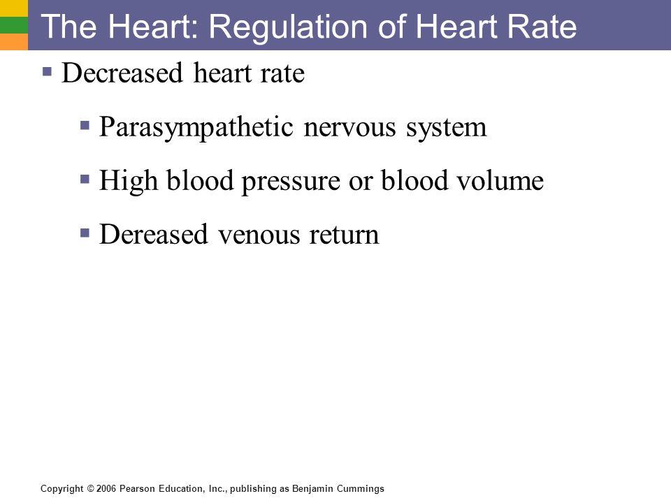 Copyright © 2006 Pearson Education, Inc., publishing as Benjamin Cummings The Heart: Regulation of Heart Rate  Decreased heart rate  Parasympathetic