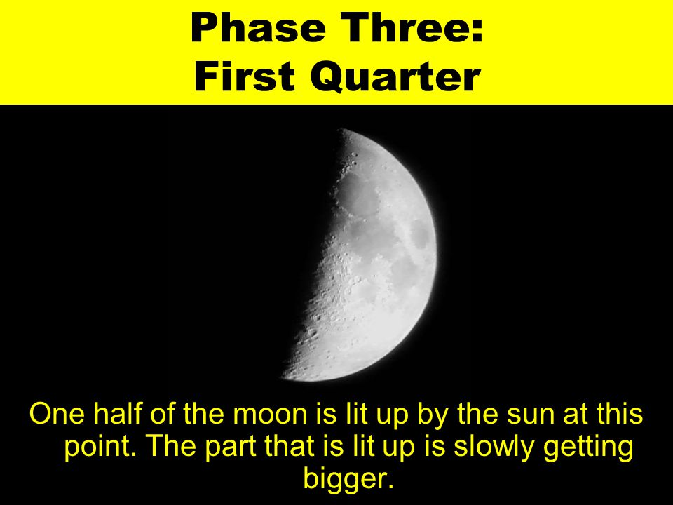 Phase Three: First Quarter One half of the moon is lit up by the sun at this point. The part that is lit up is slowly getting bigger.