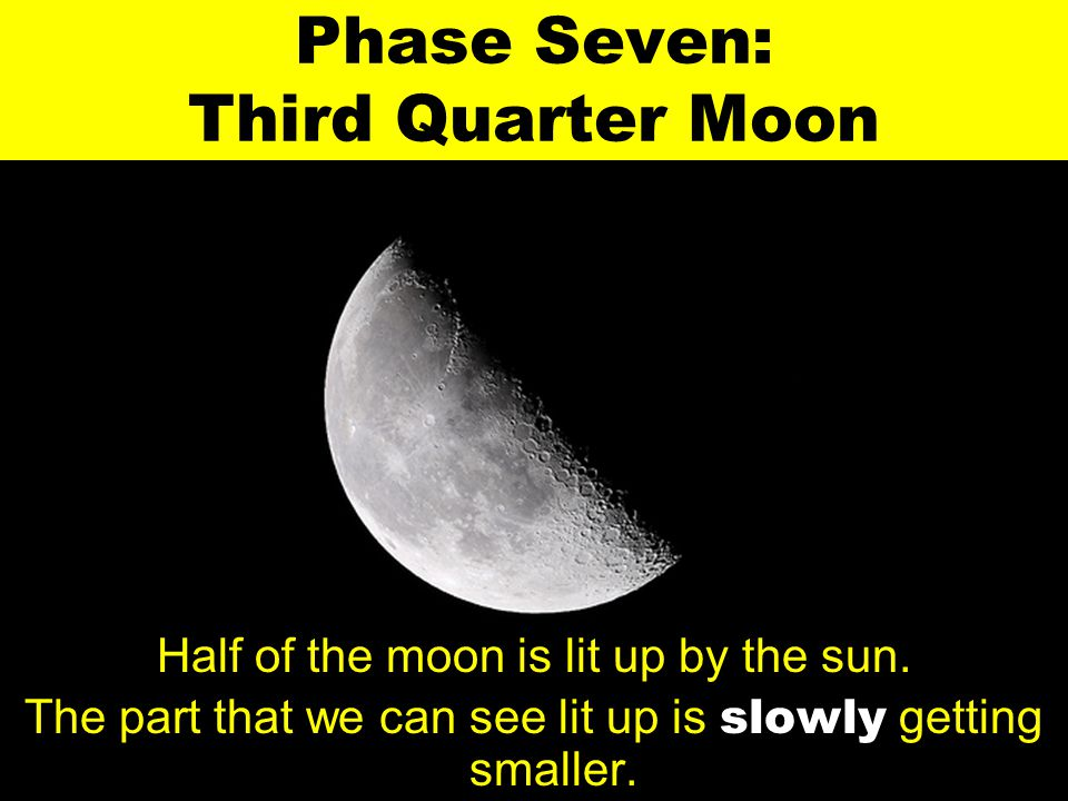 Phase Seven: Third Quarter Moon Half of the moon is lit up by the sun. The part that we can see lit up is slowly getting smaller.