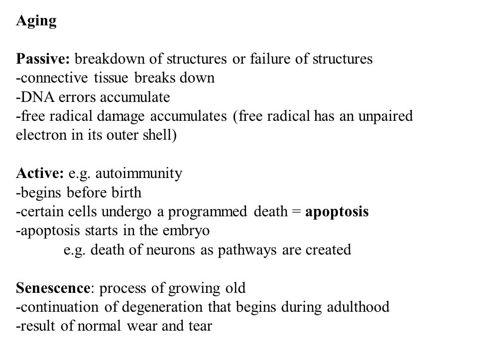 Aging Passive: breakdown of structures or failure of structures -connective tissue breaks down -DNA errors accumulate -free radical damage accumulates