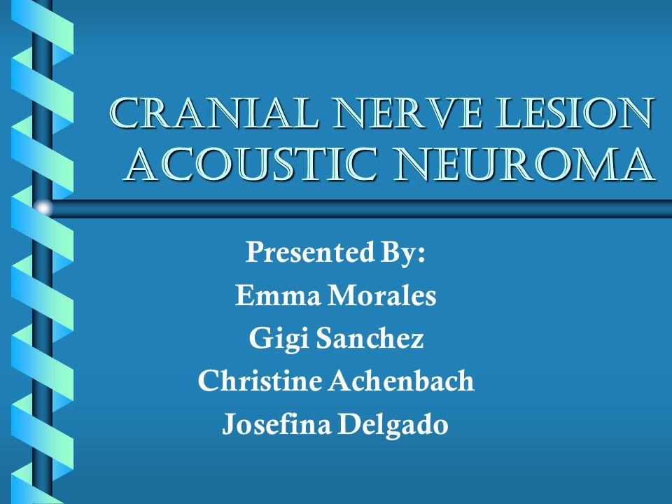 Cranial Nerve Lesion Acoustic Neuroma Presented By: Emma Morales Gigi Sanchez Christine Achenbach Josefina Delgado