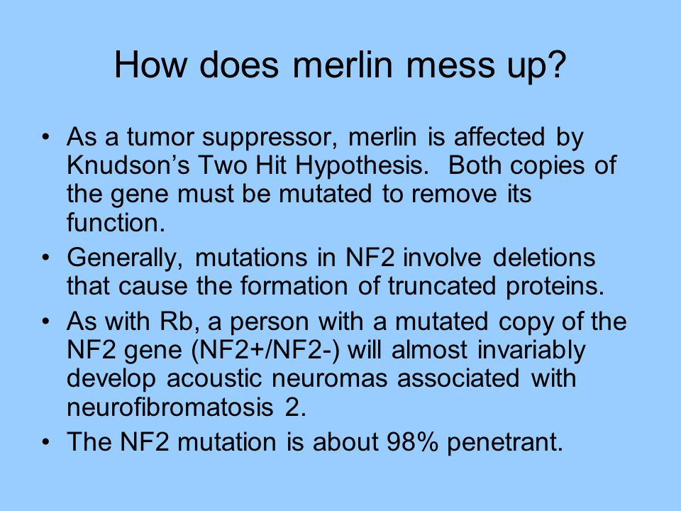 Merlin Mutations in Mice Mutant mice exhibited formation of metastatic osteosarcomas, whereas in humans tumor growth is usually benign schwannomas which are localized.