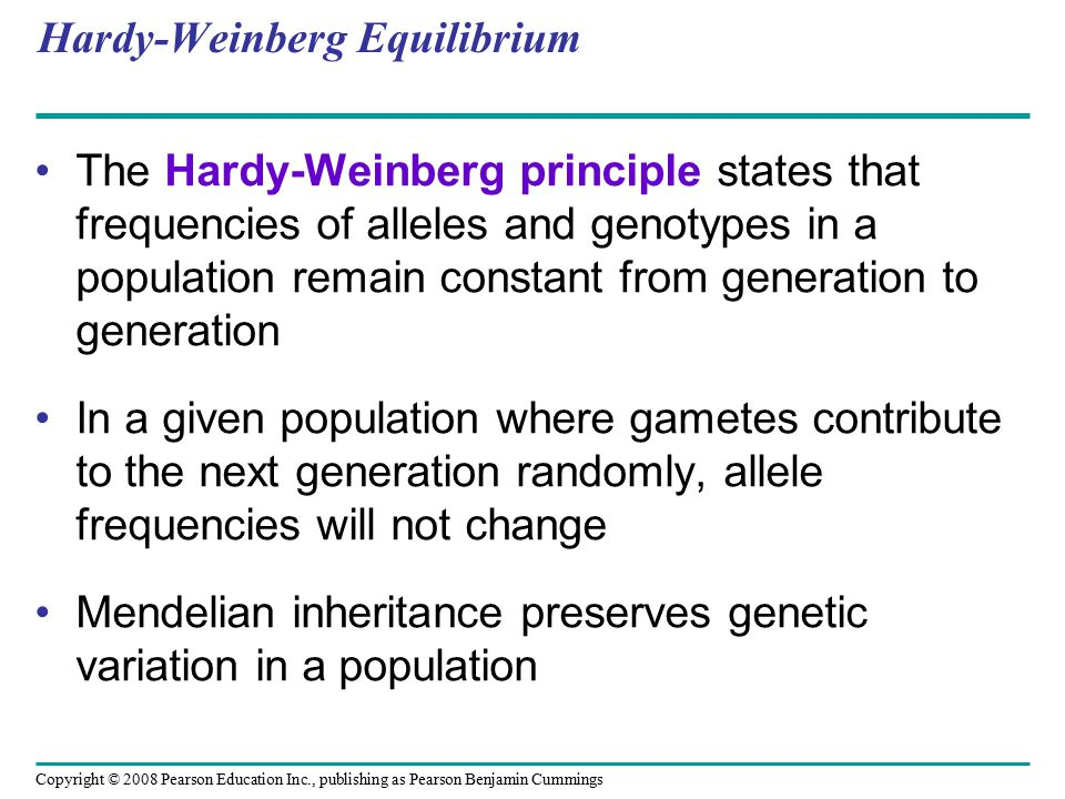 Copyright © 2008 Pearson Education Inc., publishing as Pearson Benjamin Cummings Hardy-Weinberg Equilibrium The Hardy-Weinberg principle states that f