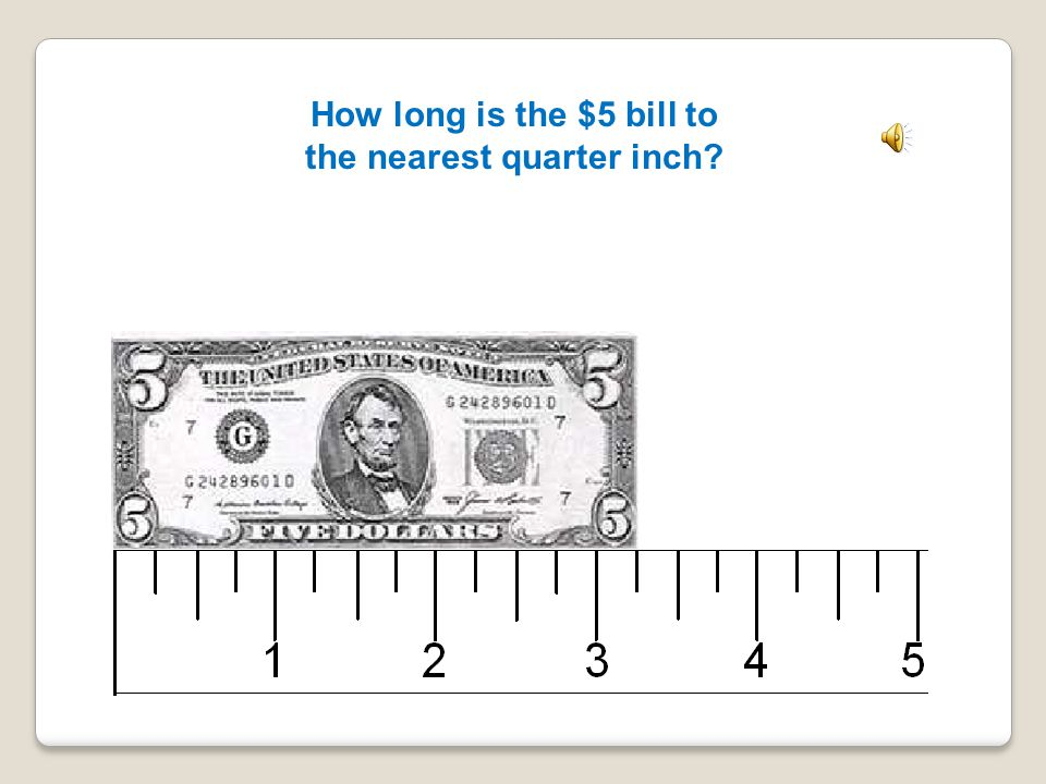 How long is the $5 bill to the nearest quarter inch