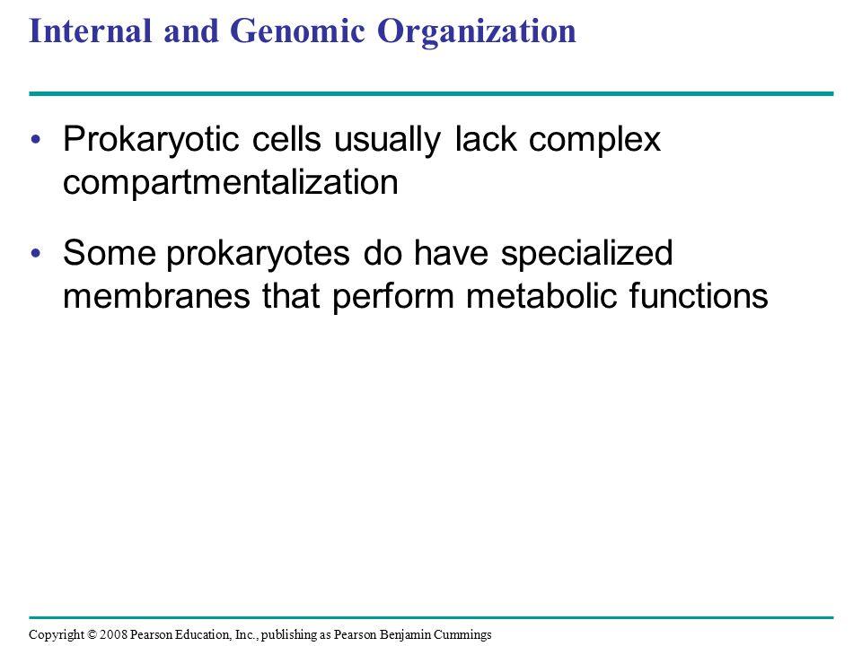 Copyright © 2008 Pearson Education, Inc., publishing as Pearson Benjamin Cummings Internal and Genomic Organization Prokaryotic cells usually lack com