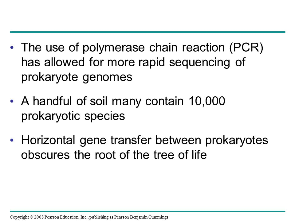 Copyright © 2008 Pearson Education, Inc., publishing as Pearson Benjamin Cummings The use of polymerase chain reaction (PCR) has allowed for more rapi