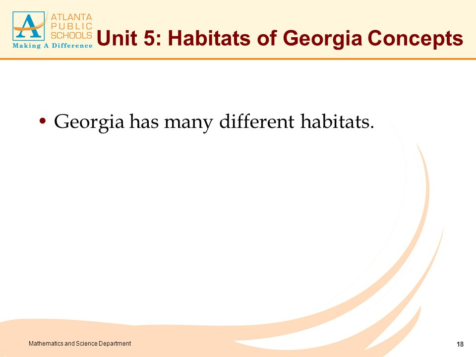 Mathematics and Science Department Unit 5: Habitats of Georgia Concepts Georgia has many different habitats. 18
