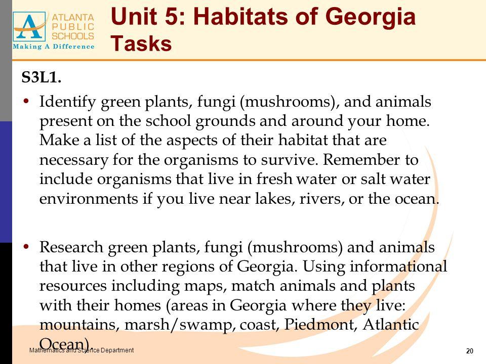 Mathematics and Science Department Unit 5: Habitats of Georgia Tasks S3L1. Identify green plants, fungi (mushrooms), and animals present on the school