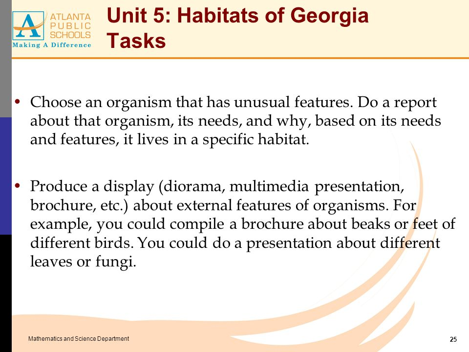 Mathematics and Science Department Unit 5: Habitats of Georgia Tasks Choose an organism that has unusual features. Do a report about that organism, it
