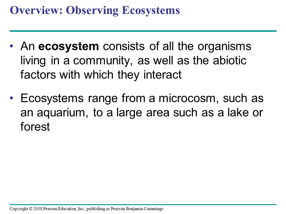 Copyright © 2008 Pearson Education, Inc., publishing as Pearson Benjamin Cummings Overview: Observing Ecosystems An ecosystem consists of all the orga