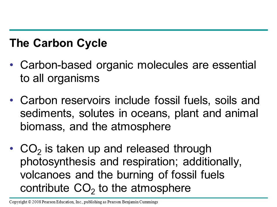 Copyright © 2008 Pearson Education, Inc., publishing as Pearson Benjamin Cummings The Carbon Cycle Carbon-based organic molecules are essential to all