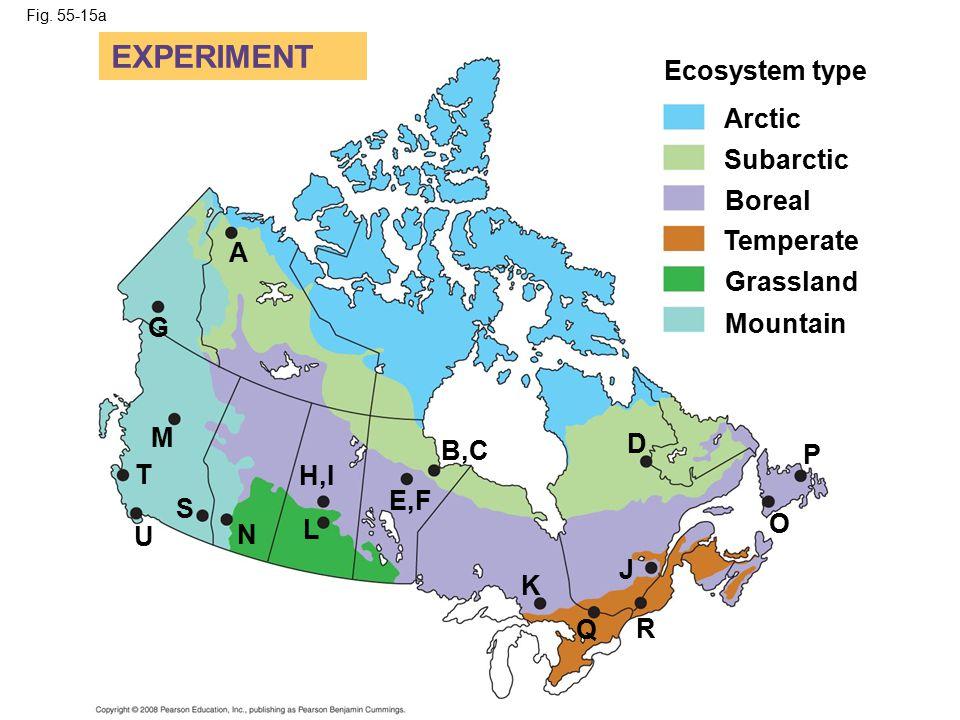 Fig. 55-15a Ecosystem type EXPERIMENT Arctic Subarctic Boreal Temperate Grassland Mountain P O D J R Q K B,C E,F H,I L N U S T M G A