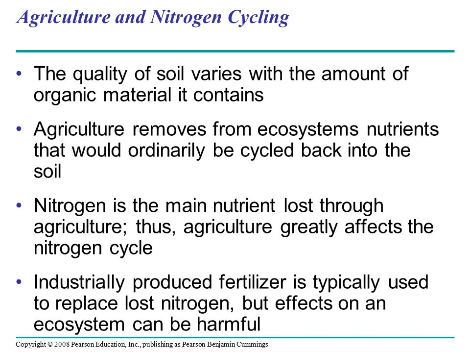 Copyright © 2008 Pearson Education, Inc., publishing as Pearson Benjamin Cummings Agriculture and Nitrogen Cycling The quality of soil varies with the