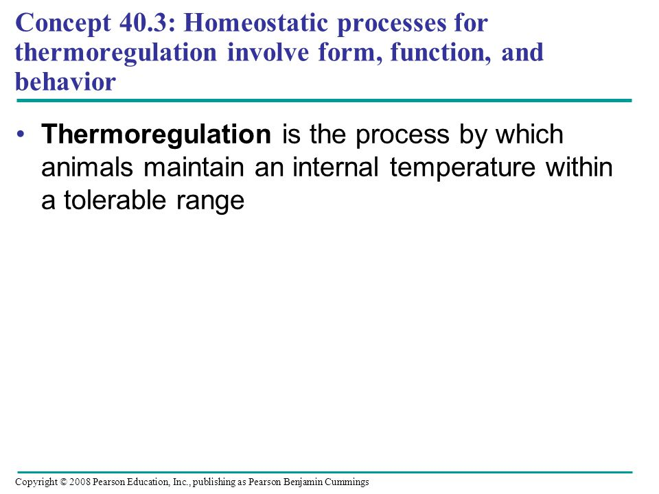 Concept 40.3: Homeostatic processes for thermoregulation involve form, function, and behavior Thermoregulation is the process by which animals maintain an internal temperature within a tolerable range Copyright © 2008 Pearson Education, Inc., publishing as Pearson Benjamin Cummings