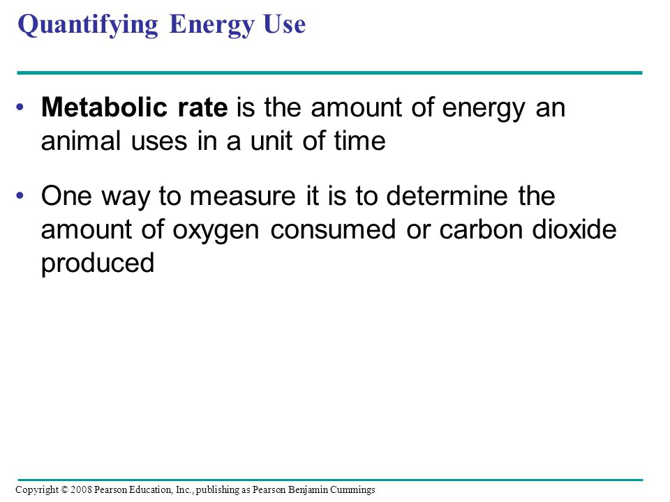 Metabolic rate is the amount of energy an animal uses in a unit of time One way to measure it is to determine the amount of oxygen consumed or carbon dioxide produced Quantifying Energy Use Copyright © 2008 Pearson Education, Inc., publishing as Pearson Benjamin Cummings