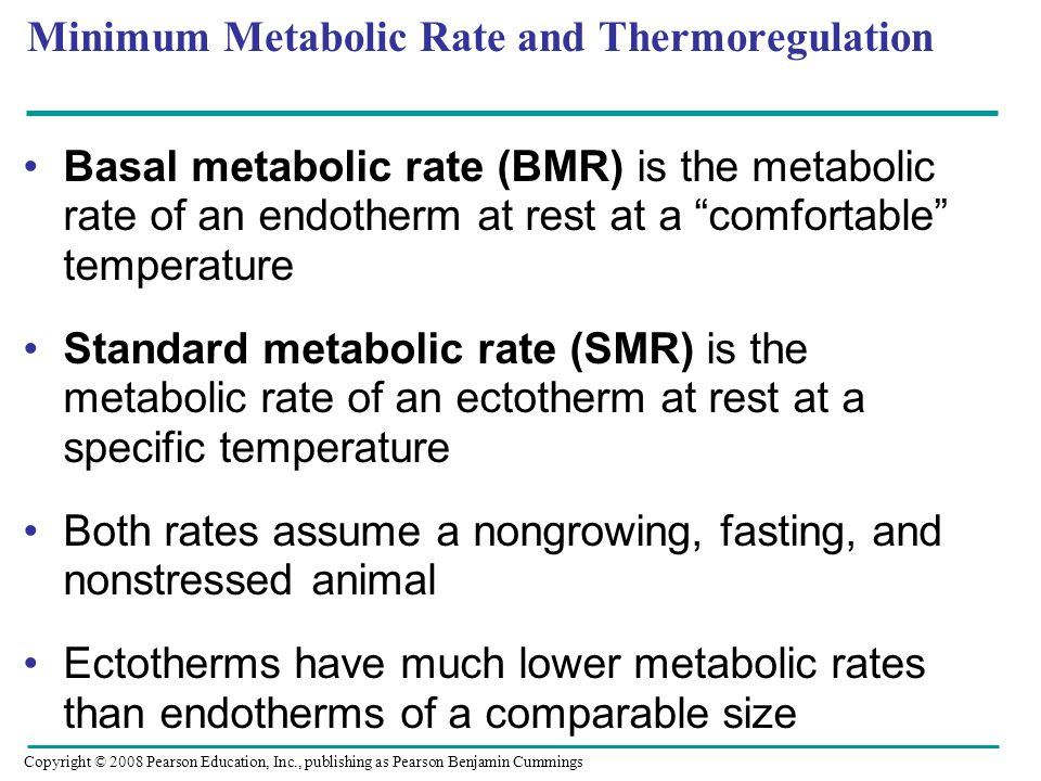 "Minimum Metabolic Rate and Thermoregulation Basal metabolic rate (BMR) is the metabolic rate of an endotherm at rest at a ""comfortable"" temperature St"