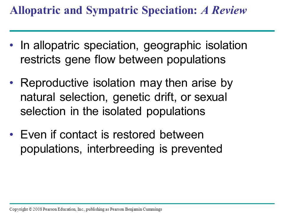 Copyright © 2008 Pearson Education, Inc., publishing as Pearson Benjamin Cummings Allopatric and Sympatric Speciation: A Review In allopatric speciation, geographic isolation restricts gene flow between populations Reproductive isolation may then arise by natural selection, genetic drift, or sexual selection in the isolated populations Even if contact is restored between populations, interbreeding is prevented