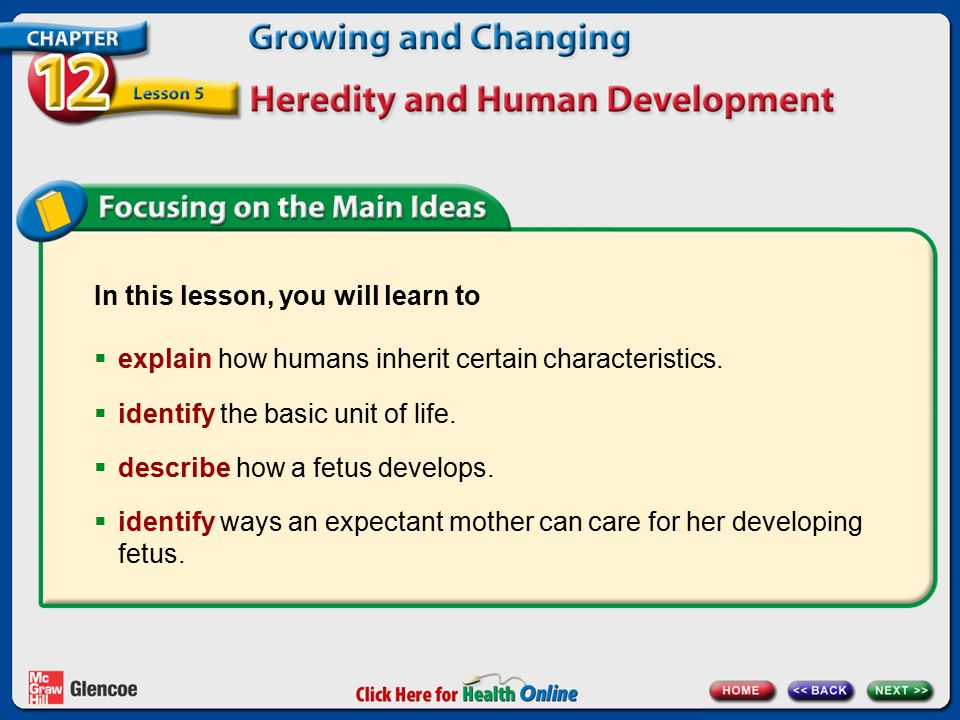 In this lesson, you will learn to  explain how humans inherit certain characteristics.