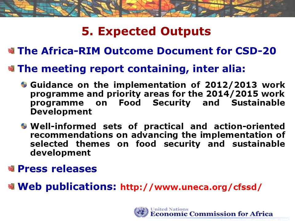 5. Expected Outputs The Africa-RIM Outcome Document for CSD-20 The meeting report containing, inter alia: Guidance on the implementation of 2012/2013
