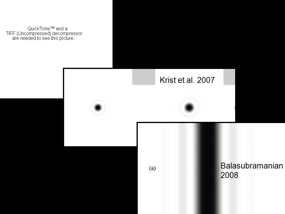 Krist et al. 2007 Balasubramanian 2008