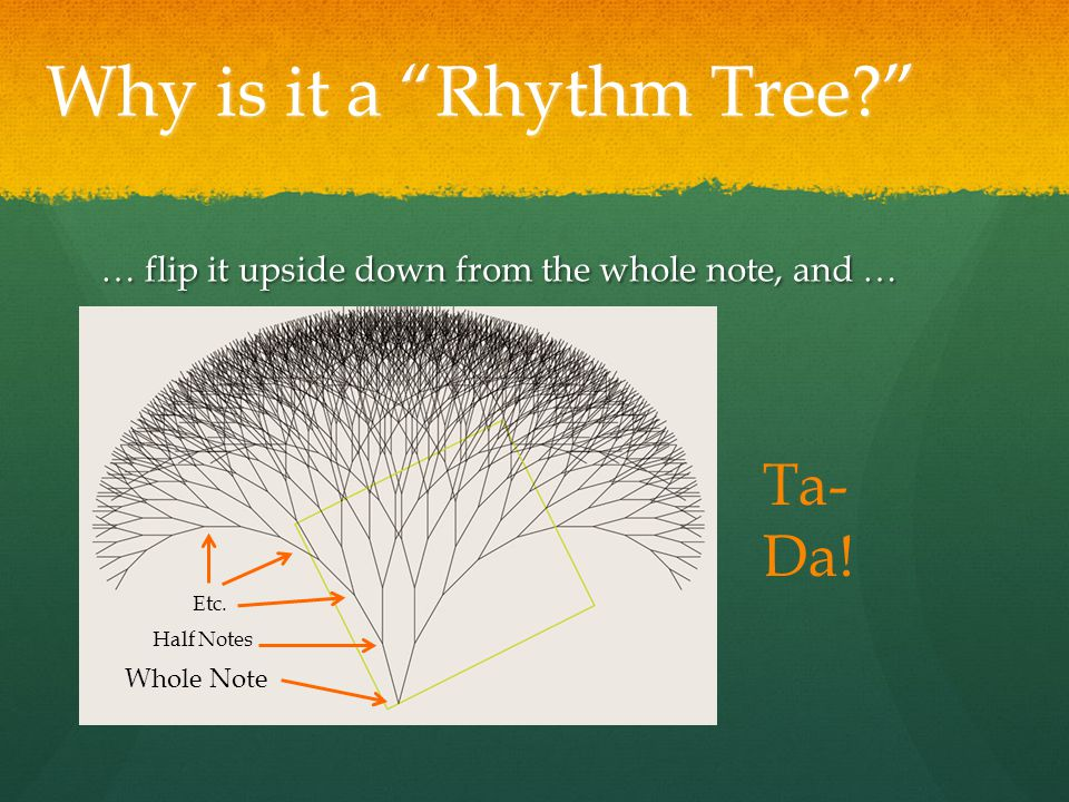Why is it a Rhythm Tree … flip it upside down from the whole note, and … Whole Note Half Notes Etc.