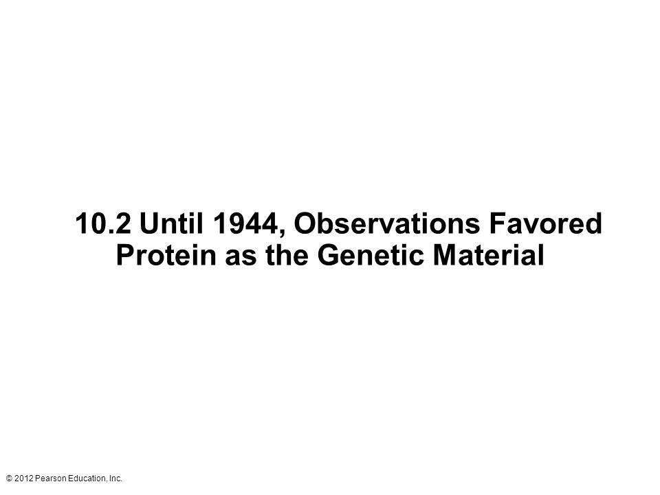 © 2012 Pearson Education, Inc. 10.2 Until 1944, Observations Favored Protein as the Genetic Material