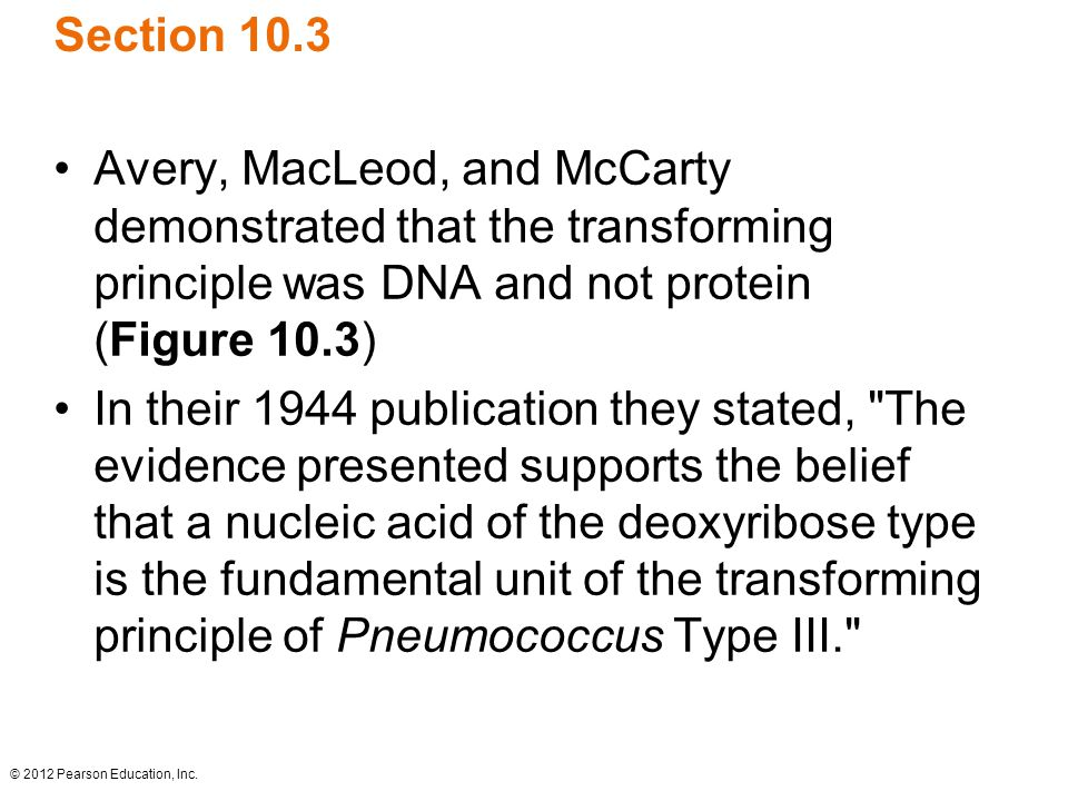 © 2012 Pearson Education, Inc. Section 10.3 Avery, MacLeod, and McCarty demonstrated that the transforming principle was DNA and not protein (Figure 1