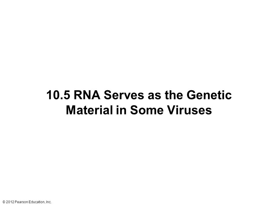 © 2012 Pearson Education, Inc. 10.5 RNA Serves as the Genetic Material in Some Viruses