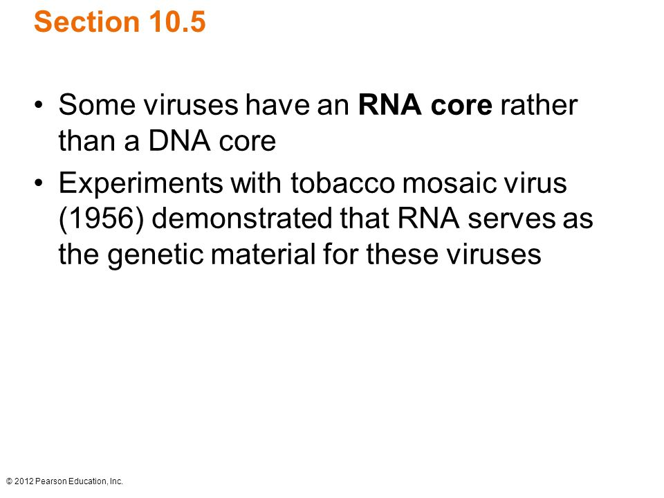 © 2012 Pearson Education, Inc. Section 10.5 Some viruses have an RNA core rather than a DNA core Experiments with tobacco mosaic virus (1956) demonstr