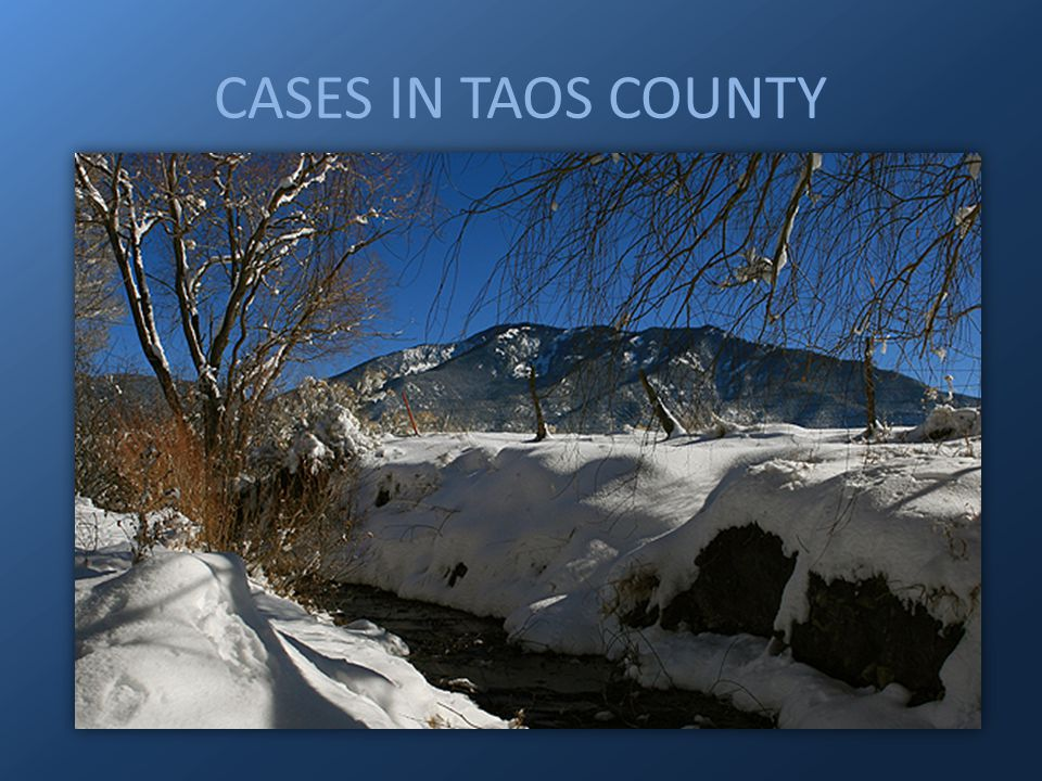 CASES IN TAOS COUNTY