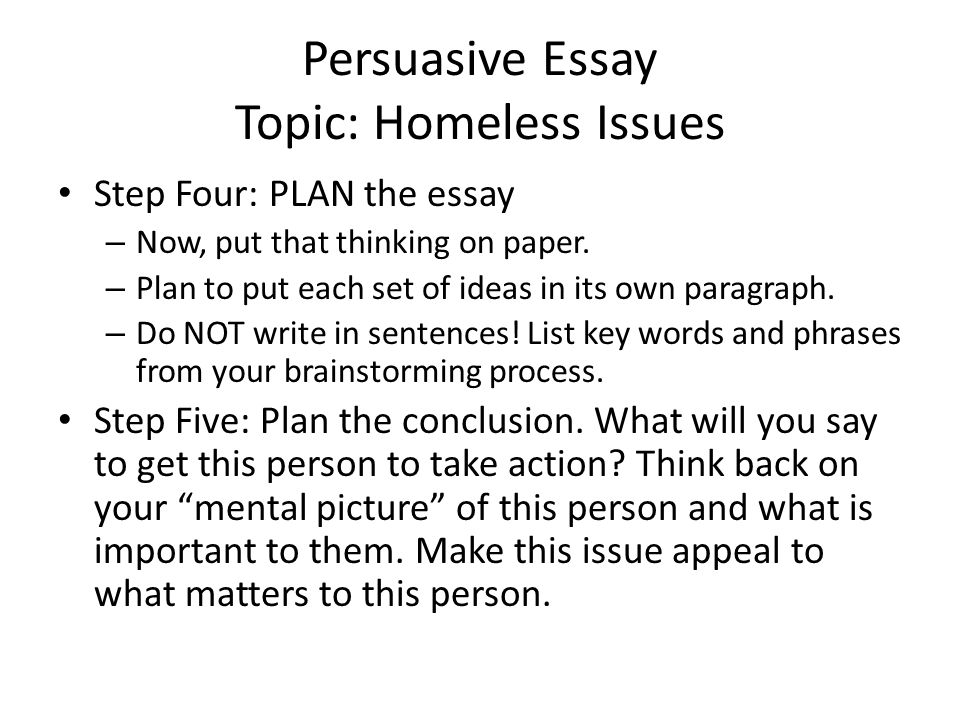 Persuasive Essay Topic: Homeless Issues Step Four: PLAN the essay – Now, put that thinking on paper.
