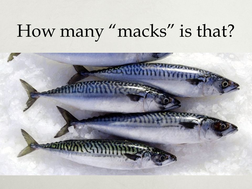 "How many ""macks"" is that?"
