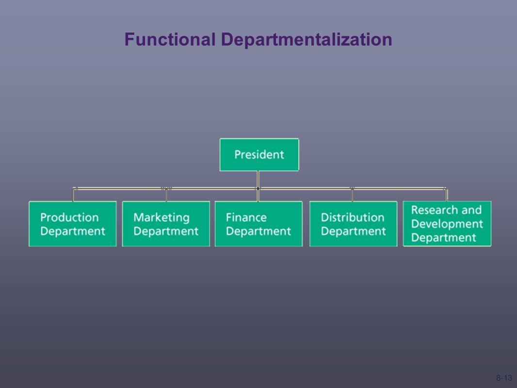 Functional Departmentalization 8-13