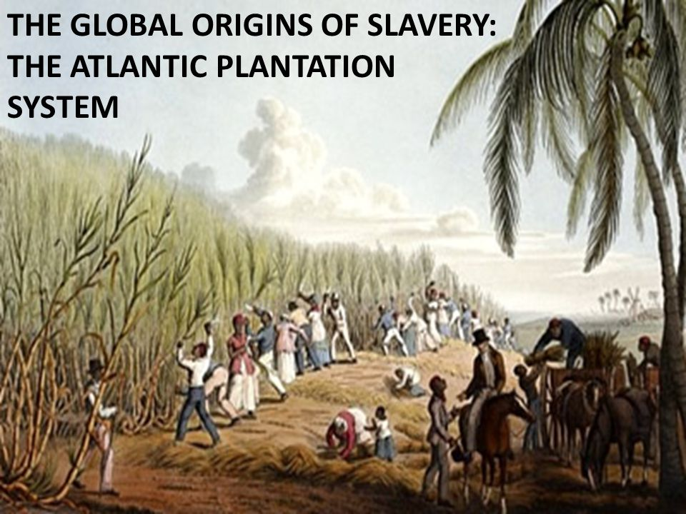 THE GLOBAL ORIGINS OF SLAVERY: THE ATLANTIC PLANTATION SYSTEM