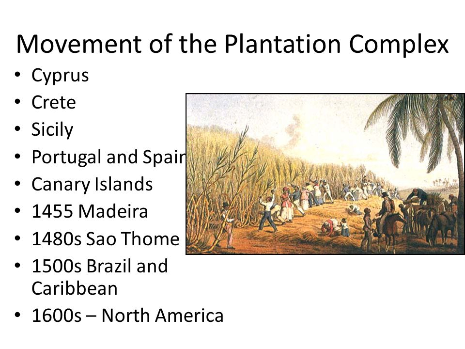 Movement of the Plantation Complex Cyprus Crete Sicily Portugal and Spain Canary Islands 1455 Madeira 1480s Sao Thome 1500s Brazil and Caribbean 1600s – North America