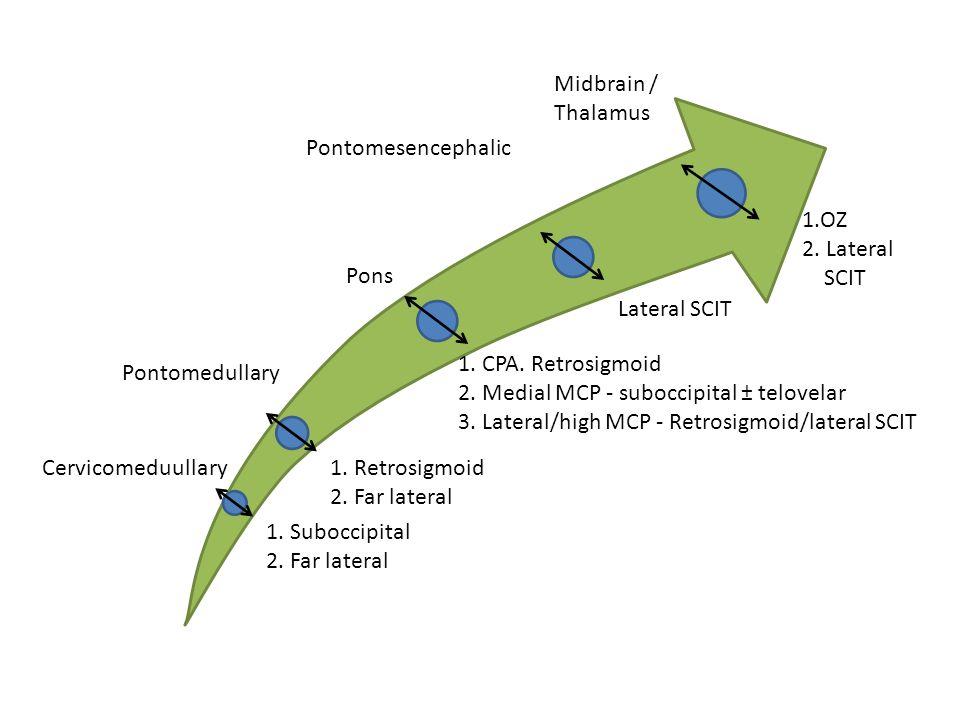Midbrain / Thalamus Pontomesencephalic 1.OZ 2.Lateral SCIT Lateral SCIT 1.