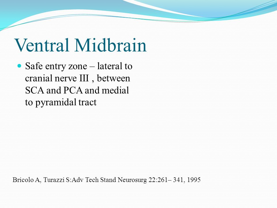 Ventral Midbrain Safe entry zone – lateral to cranial nerve III, between SCA and PCA and medial to pyramidal tract Bricolo A, Turazzi S:Adv Tech Stand Neurosurg 22:261– 341, 1995