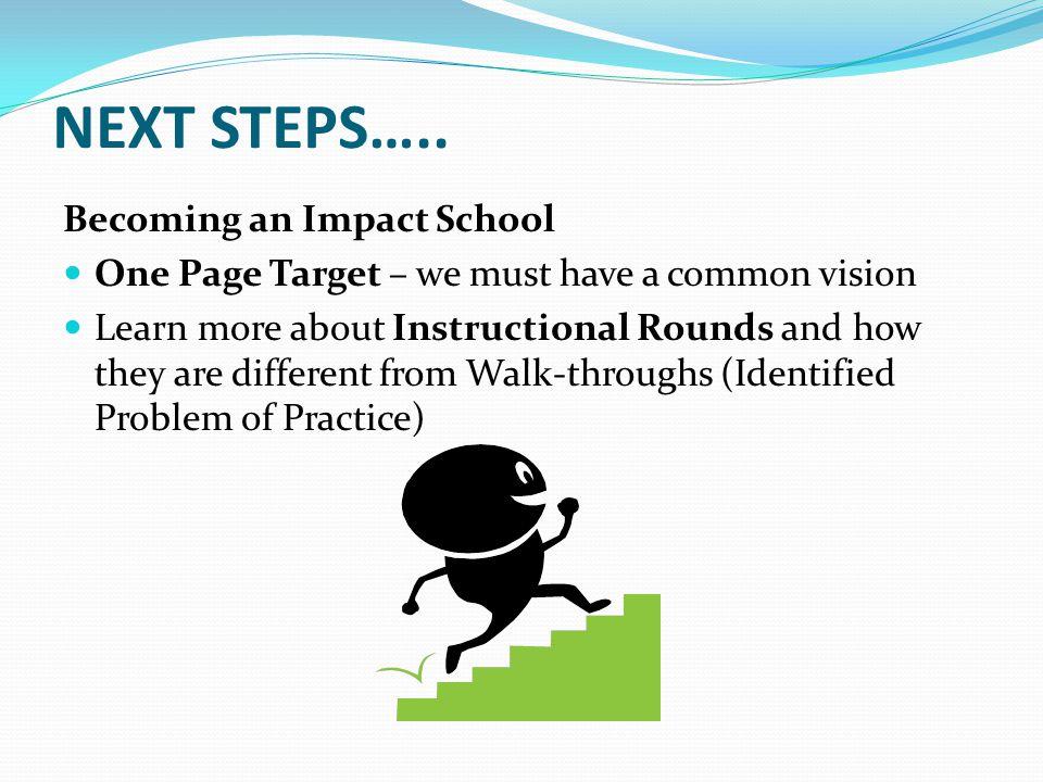 NEXT STEPS…..