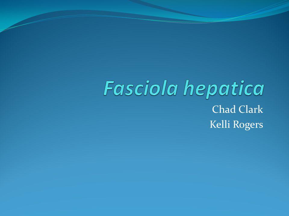 Chad Clark Kelli Rogers