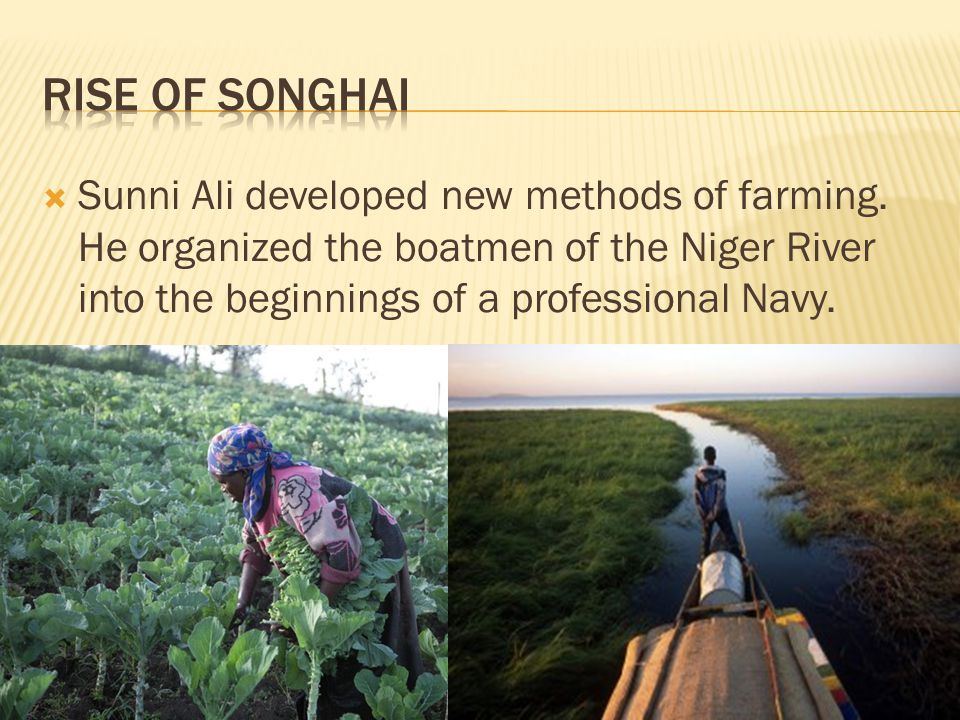 Sunni Ali developed new methods of farming. He organized the boatmen of the Niger River into the beginnings of a professional Navy.